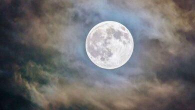 Photo of Cuándo se podrán ver la luna de nieve y la lluvia de estrellas